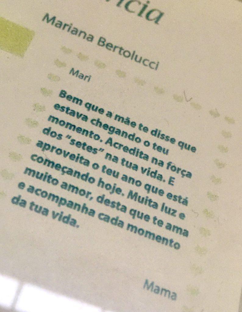 cronica - numero sete - mariana bertolucci